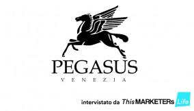Intervista pegasus