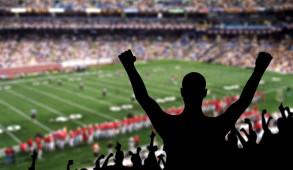 fan stadium sport