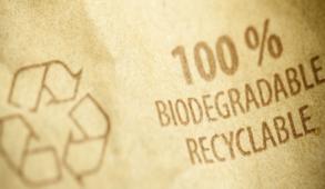 Branding e packaging sostenibile