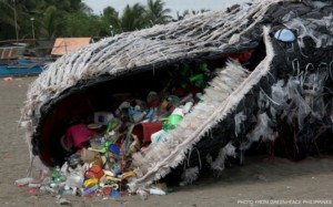 campagna dead whale greenpeace philippines