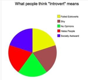 bias introversi