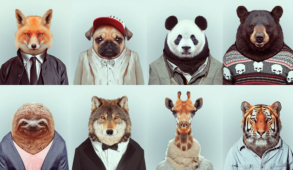 Trend animals - Animali carini e dove trovarli