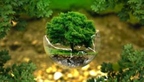 CSR strategica