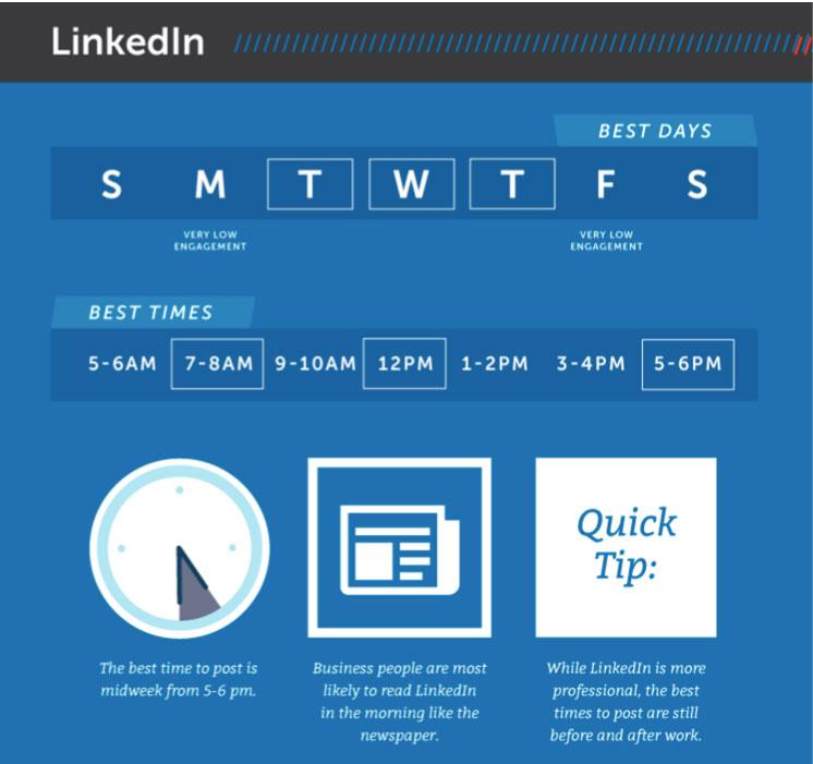 Infografica pubblicazioni LinkedIn