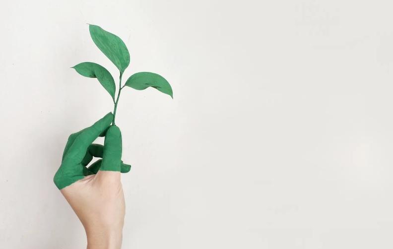greenwashing-green-economy