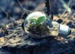 investire-nella-green-economy